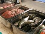 Čerstvé ryby 2